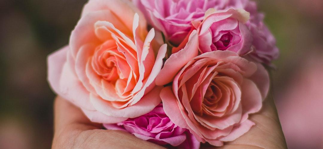 Arti Bunga Handbuket Cocok Untuk Wisuda